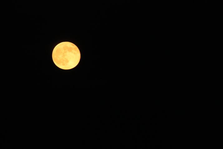 Zlatý Měsíc