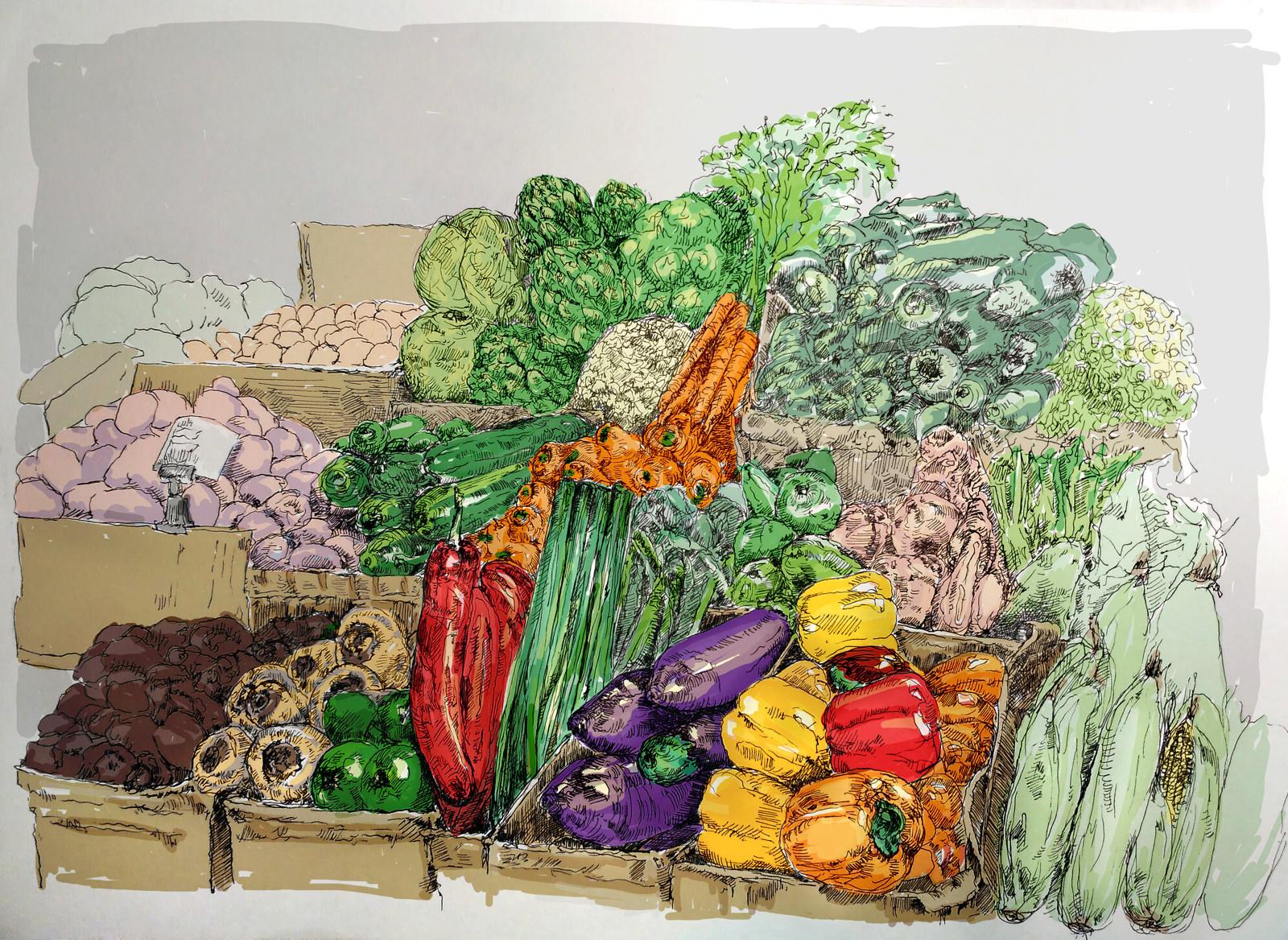 Barevna Zelenina Pc Kresba Zbozi Prodejce Lucstokl Fler Cz