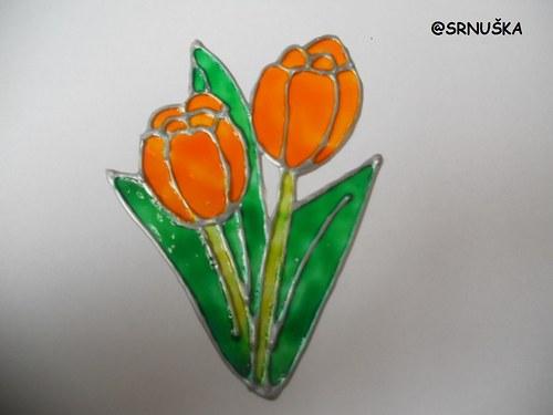 Dotyk prírody - tulipán