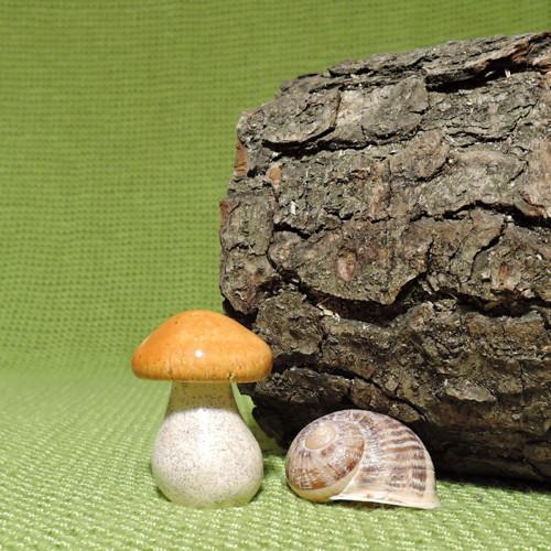 Na normální houbovej čaj (výška 5 cm) č. 9