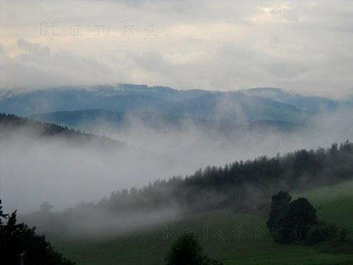 Mlžné hory (aneb Šumava po dešti)