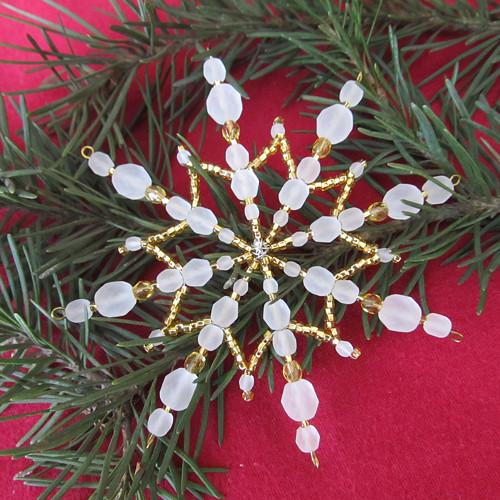 Vánoční hvězda zlatoledová