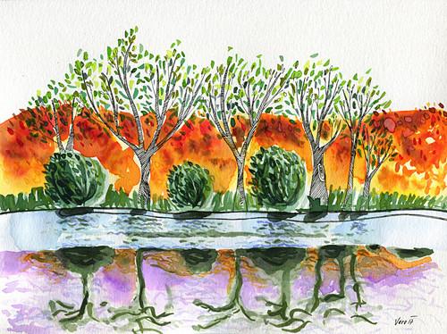 Mezi rybníky