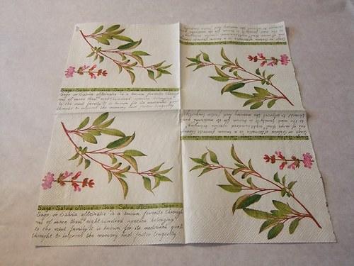 Květiny - bylinky 4.