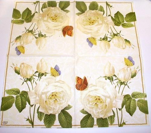 bílá růže a motýl