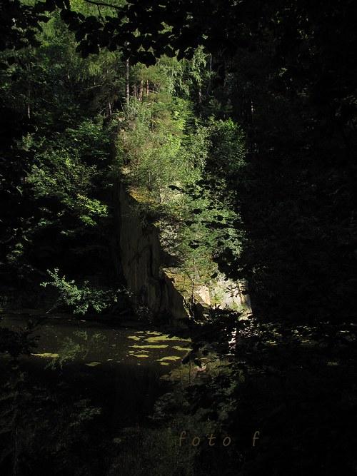 Lesní zákoutí