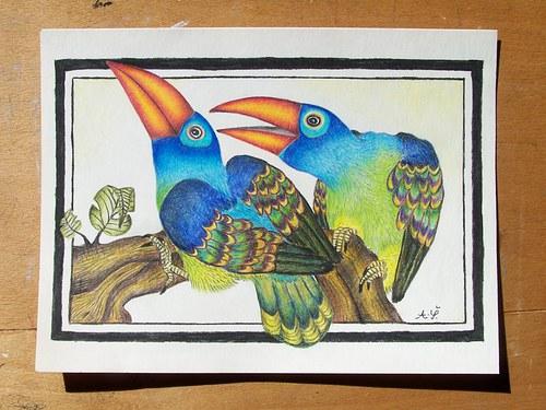 Ptačí vrtochy