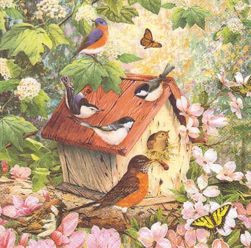 Ubrousek - budka s ptáčky