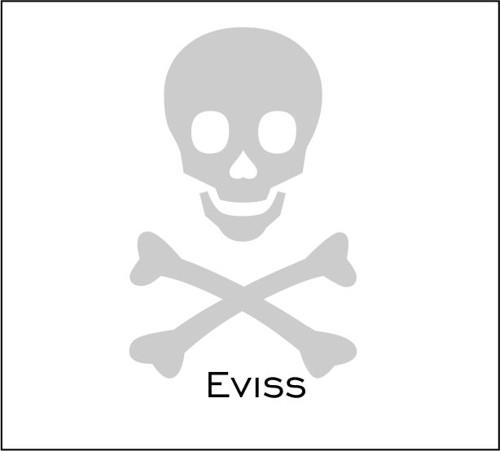 Pirátská  - reflexní nažehlovačka