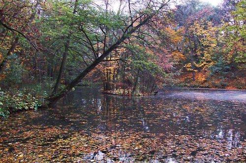 Impresionistický podzim ve Vinoři