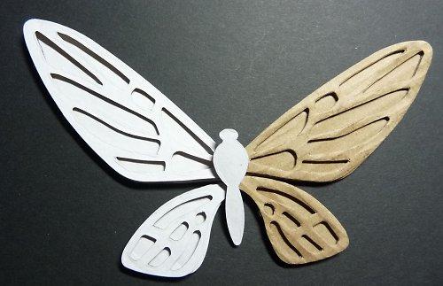 Výseky - motýl