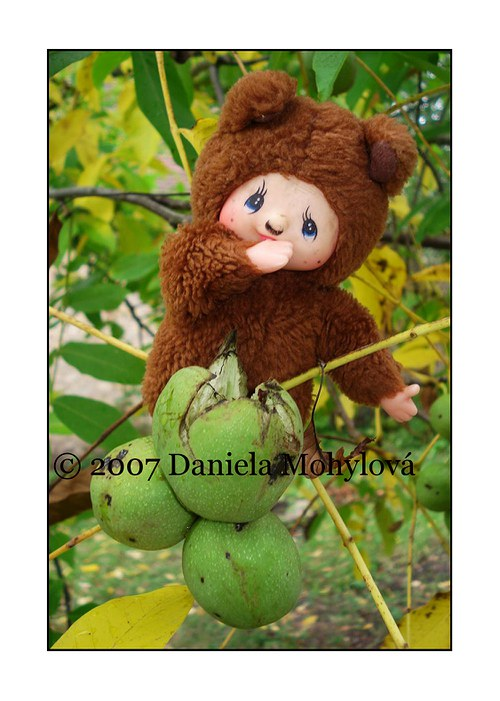 Příběhy hraček - mončičák