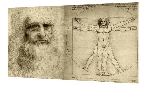 Bavlněný panel Vinci 18