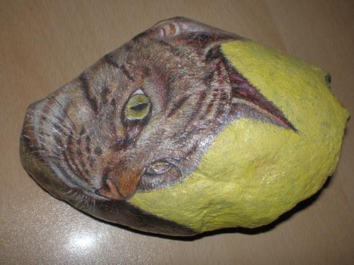 Kočičí hlava
