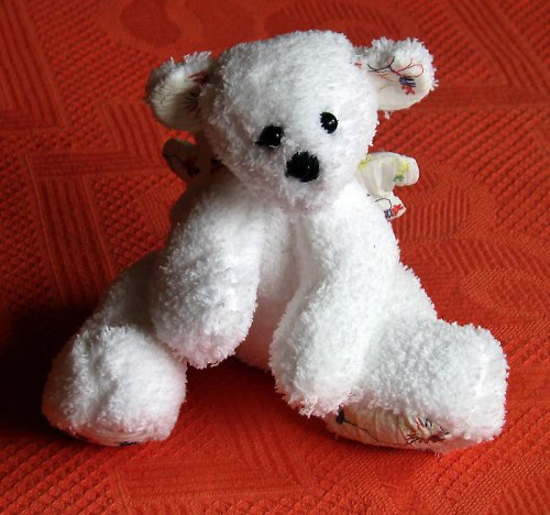 Medvídek andělský