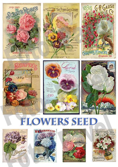 Vintage reklama - zahrada, květiny 2