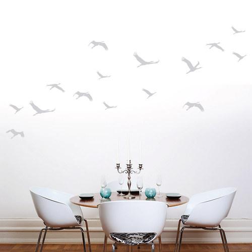 Ptáci v letu