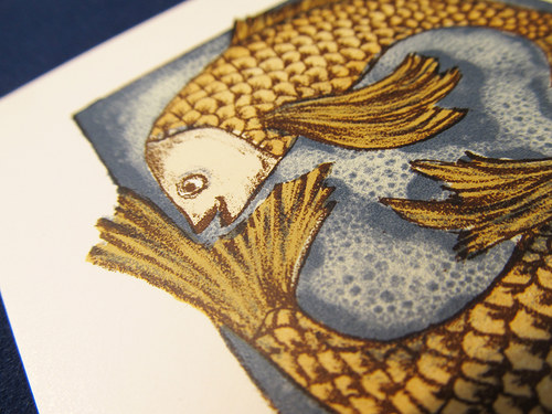 ryby (19.2.-20.3.)