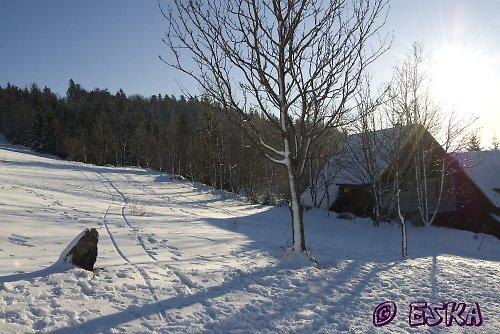 Zima...fotografie, PF, obrázek