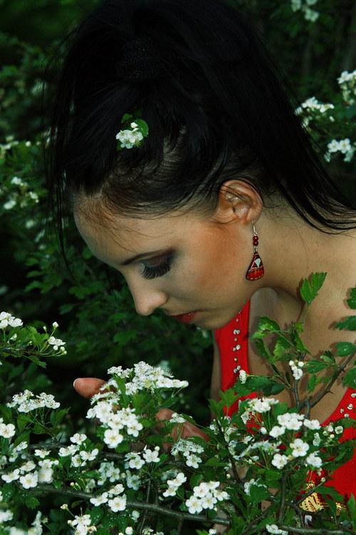 Náušnice motýl - mot69