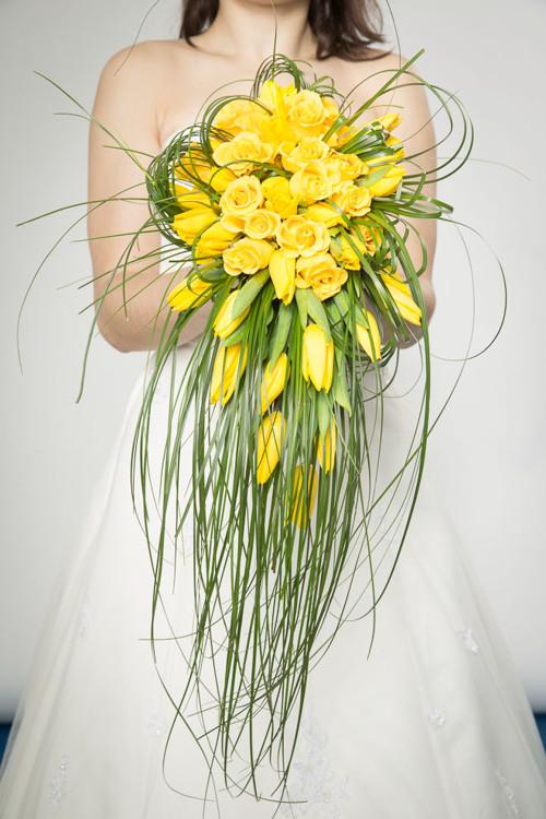 Žlutá z tulipánků