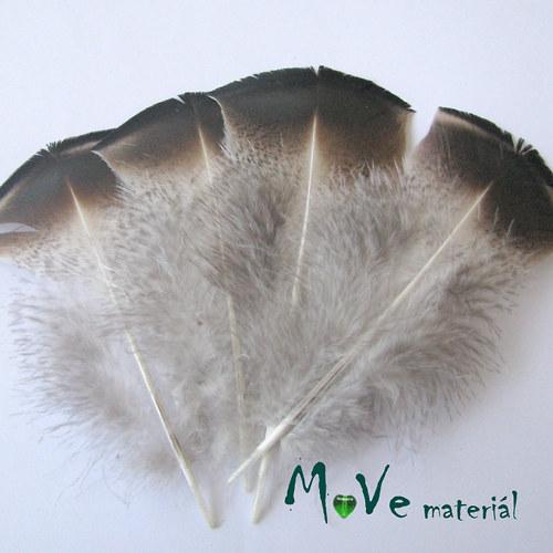 Krocaní peří hrudní 10-12cm,4ks přírodní