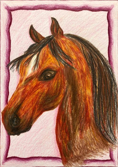 Kůň - kresba