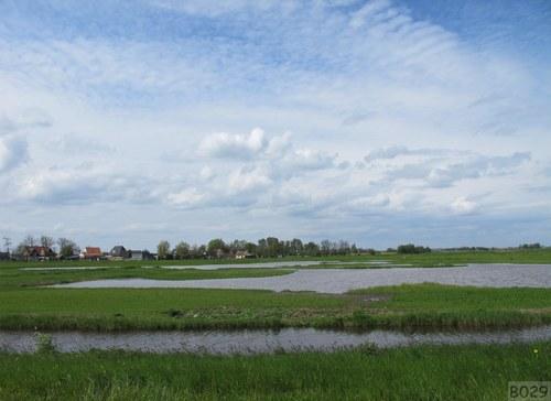 Holandská krajina