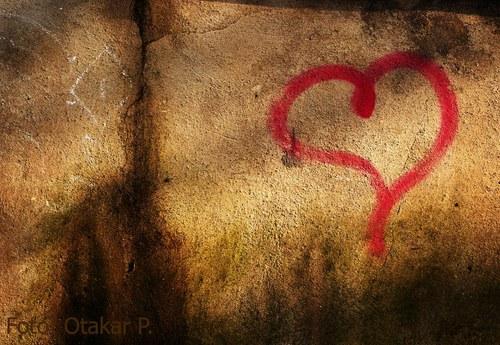 O orgánech lásky