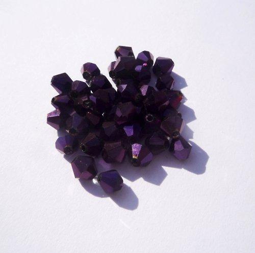 Sluníčka fialová (15 ks)
