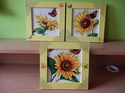 Obrázky Slunečnice s motýlem