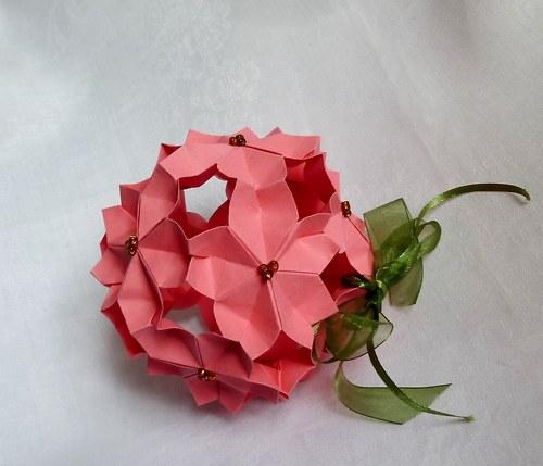 Crateagus laevigata rosea