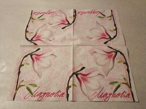 Květiny - magnolie 2.