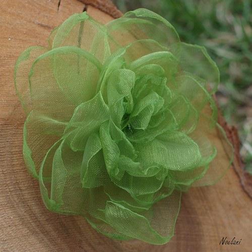 S jarní zelenou