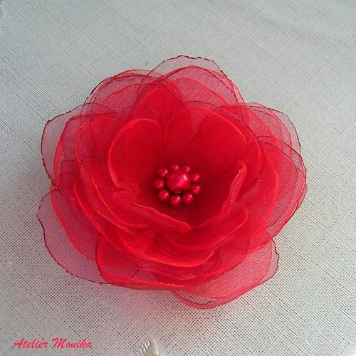 Red Hot flower