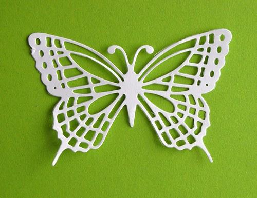 Motýl M
