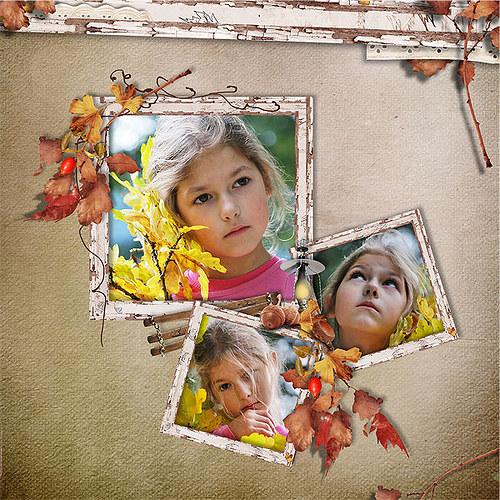 Koláž Podzimní listí pro Vaše fotky