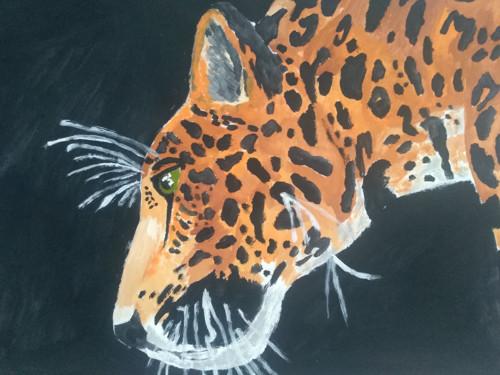 Tajemný jaguár