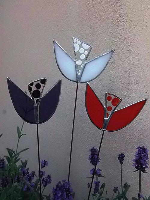 tulipány malé
