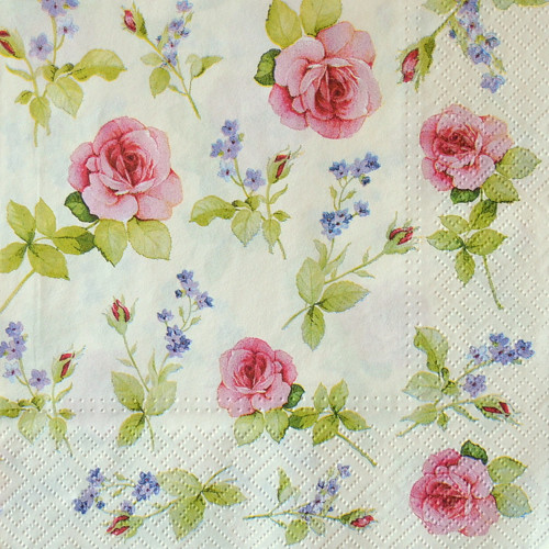 Růže vintage VII.