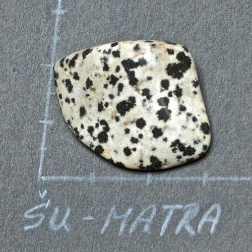 Jaspis dalmatin