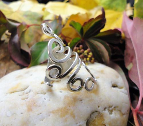stříbrná chobotnička