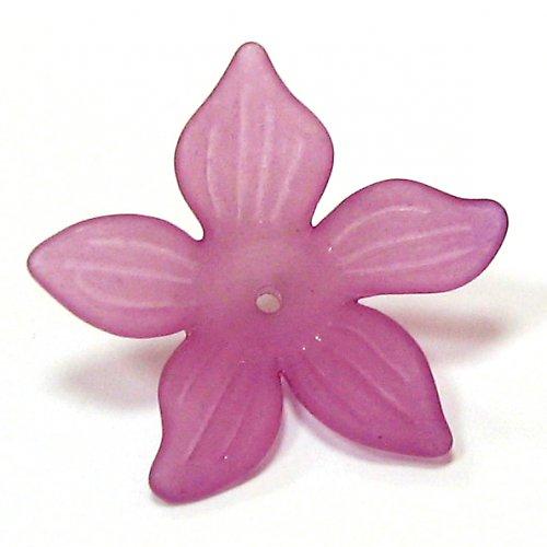 Květ velký růžovofialová