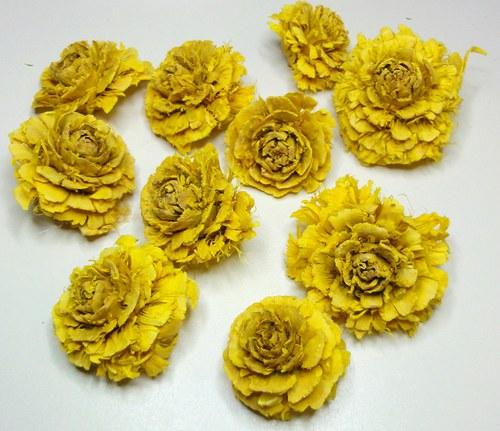 Cedrová růže žlutá