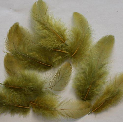 Peří olivově zelené - 20 ks