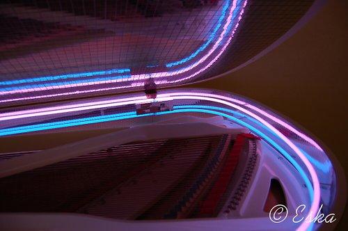 fotografie Neon