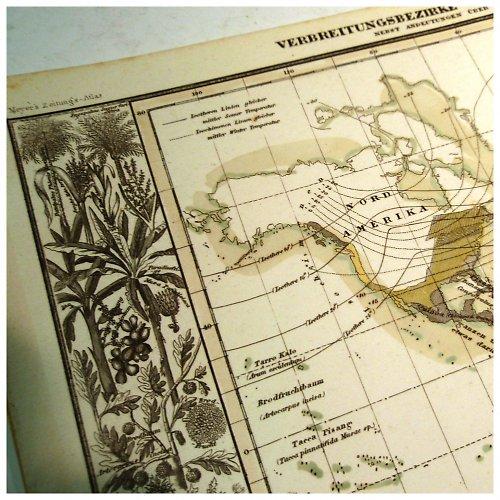 Historická mapa z roku 1850 PŘEHLED PLODIN č.1072