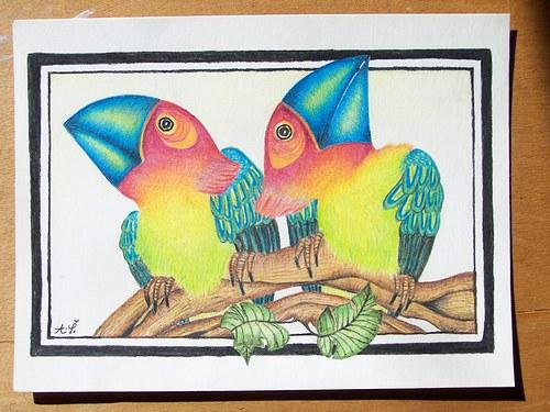 Ptačí koumáci