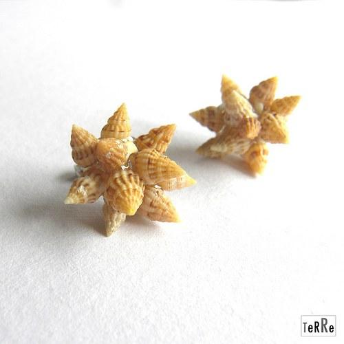 Lasturové květy