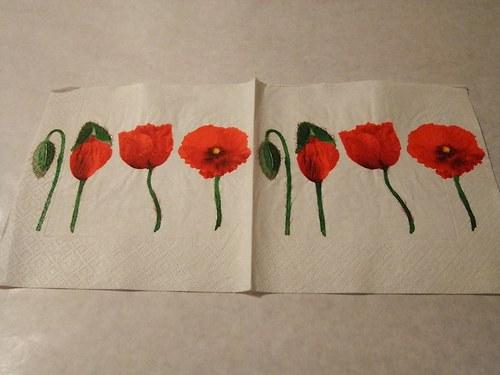 Květiny - tulipány 7.